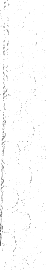 [ocr errors][ocr errors][merged small][merged small][ocr errors][ocr errors][ocr errors][merged small][merged small][merged small][ocr errors][ocr errors][merged small][merged small][merged small][merged small][ocr errors][merged small][merged small][merged small]